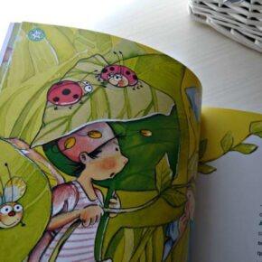 Libros Personalizados con GEMSER